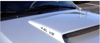 1999-04 Mustang GT Hood Scoop Decal Set - 4.6L V8Designation