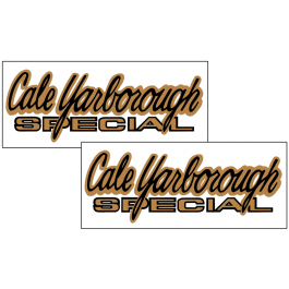 1969 Mercury Cyclone - Cale Yarborough Special - Decal Set