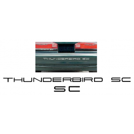 1989-95 Ford Thunderbird Embossed Bumper Letters